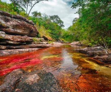 El río más hermoso del mundo Caño Cristales